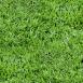 Grass Textures green